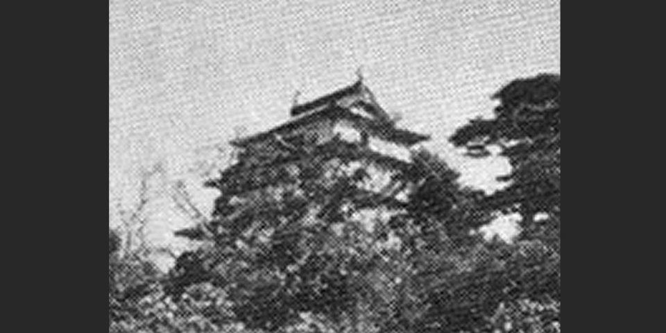 南條公10代の居城、羽衣石(うえいし)城