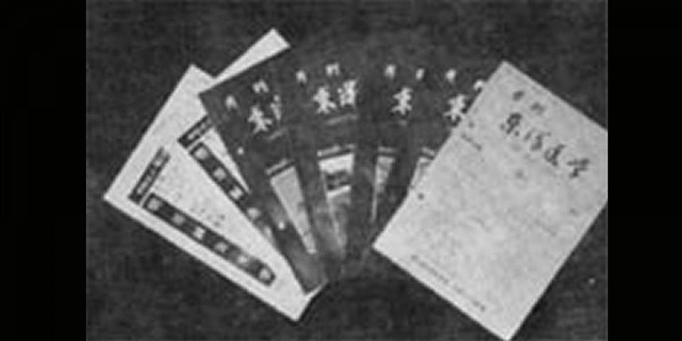 南條式について記述されている医学誌